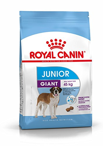 Royal Canin GIANT Junior 31-15 kg - Hundefutter (Verdauliches Eiweiß)