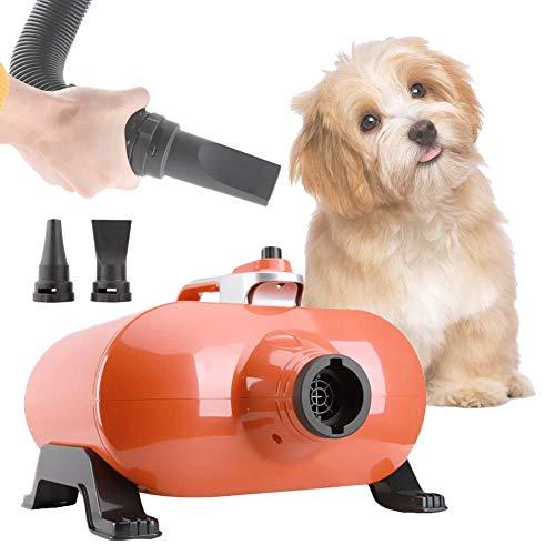 Profi-staub Gebläse (Haartrockner für Haustiere, Dual Motor, High Velocity, Profi-Haartrockner für Haustiere, 3000 W (Orange))