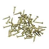 rzdeal 200PCS Miniatur Nägel rund Kopf Messing Nägel für kleine Scharniere Puppenstuben Zarte Boxen Mini Craft Projekte (DIY, 0,1x 0,8cm)