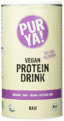Purya Bio Vegan Protein Drink Raw-Energy, 1er Pack (1 x 550 g) - Vegan Drink Recovery