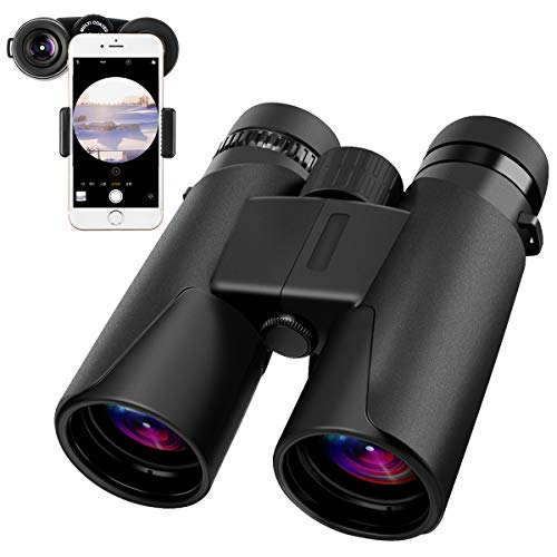 Fernglas 10 x 42 faltbare Binocular Ferngläser für Vogelbeobachtung, Wandern, Jagd, Sightseeing,...