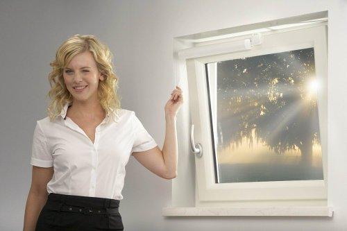 Winflip Fensterschließer - 4