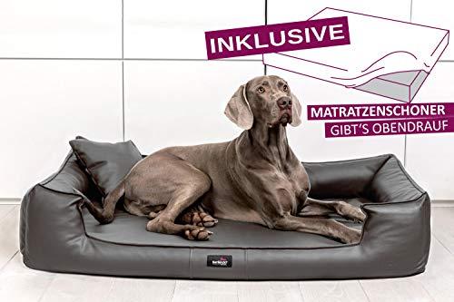 tierlando® G4-L-02 Orthopädisches Hundebett Goofy VISCO | ~ inkl. Matratzenschoner ~ | Anti-Haar Kunstleder Hundesofa Hundekorb Gr. L 110cm Graphit Ortho