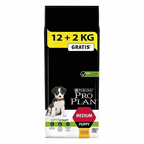 Pro Plan Dog Medium Puppy Hund, Huhn und mit Reis, Trockenfutter Beutel 12 kg + 2 kg gratis, 1er Pack (1 x 14 kg) Hund Huhn Und Reis