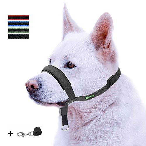 ILEPARK Gepolsterter Hundehalfter aus Leder - Hundehalsband-Halfter der Ziehen verhindert, Einstellbar, Maulkorb Hunde (S, Schwarz)