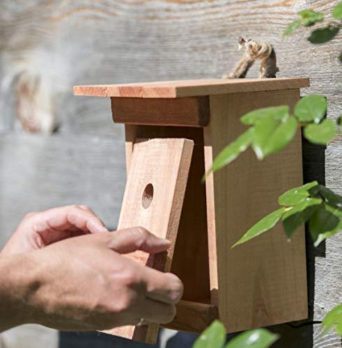 Windhager Nistkasten BIRDY - 4