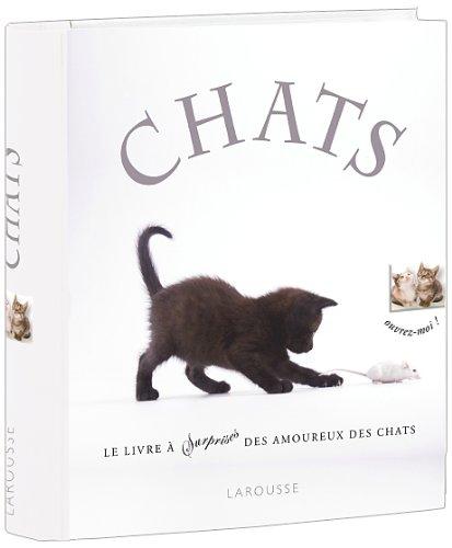 Chats - nouvelle prsentation