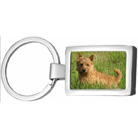 Norwich Terrier CHROME (FC) en caja de llaves 179