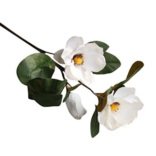 OBI l Magnolia