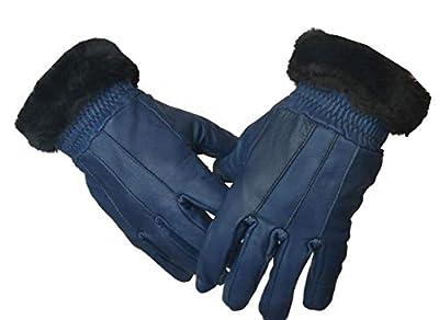 GOOD LIFE STUFF Women's Leather Gloves (GLSGL-8040-$P)