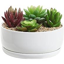MyGift 6, Moderno Blanco de cerámica Redondo para Maceta suculentas/Cactus Maceta/Decorativo