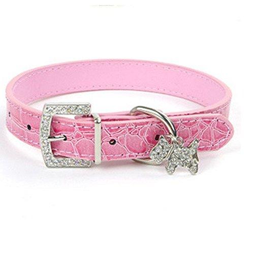 DogPets Collar Cuero Perro pequeño Talla S. Collar