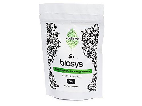 Ecothrive Biosys Instant Réglez Thé 50 g