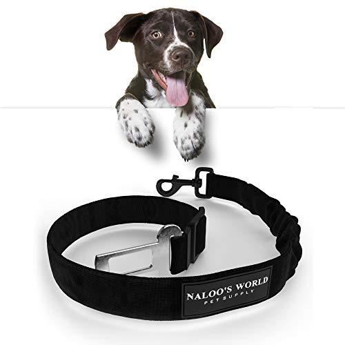 ᐅ Hunde Sicherheitsgurt Test der Bestseller im ultimativen ...