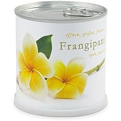 Blumen in der Dose Frangipani - Plumier von MacFlowers