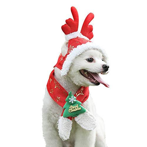 Red Warm Christmas Pet Santa Hut und Schal -