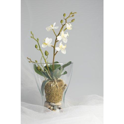 Orchidea artificiale ZEHRA in zolla di terra con radici aeree, crema, 30 cm - Orchidea decorativa / Fiore con foglie - artplants