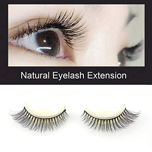 Beauty & Health Friendly 1 Set Makeup Individual False Eyelashes Handmade 12 Rows Rainbow Colorful Synthetic Fake Eye Lashes Beauty Extension Tools Neither Too Hard Nor Too Soft