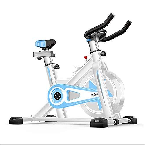 DFMD Professionelle Indoor-Heimtrainer, Familie Unisex-Gewichtsverlust Abdominal Sport Bike 360 ° -Sicherheitsschutz Sportgeräte Ultra-leises Fahrrad, Blau
