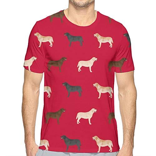 Labrador Retriever Dog - Red_529 Fashion Herren Rundhals Design Kurzarm Slim Fit Freizeit T Shirt XXL