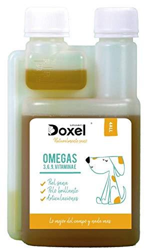 Doxel 4all -100ml | Aceite Perros| Suplemento Natural | Sistema Inmunitario Reforzado|...