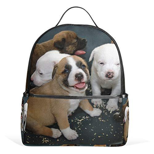 Rucksack für Schule, Shaggy Hund, Segeltuch, große Kapazität, lässiger Reise-Tagesrucksack für Kinder, Mädchen, Jungen, Kinder, Studenten