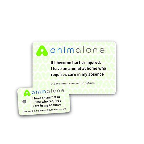 animalone Hinweiskarte Haustier für den Notfall (englischsprachig)