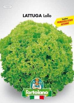 Sementi orticole di qualità l'ortolano in busta termosaldata (160 varietà) (LATTUGA LOLLO)