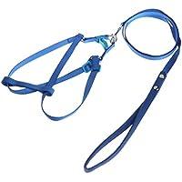 Tandou - Arnés para Mascotas para el Aire Libre, Ajustable, Cuerda de Entrenamiento antiácaros
