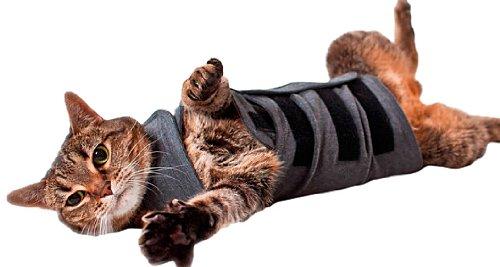 Thundershirt Beruhigungsweste – Katzenmantel, Größe M, grau
