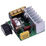 High Power 4000 W 220 V AC SCR Spannungsregler Dimmer Elektromotor Controller-Geschwindigkeit