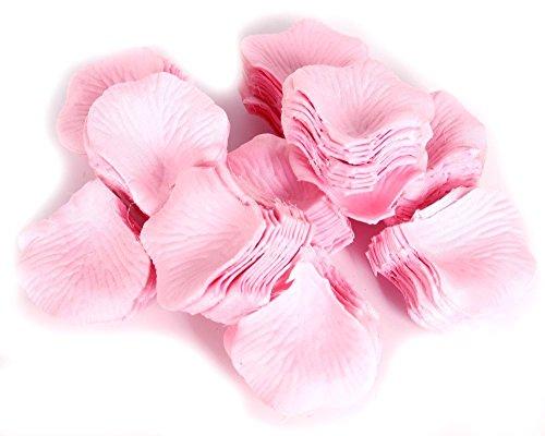 FreshGadgetz 1000 Rosenblätter Blütenblätter aus Seide (1000 Light Pink petals) - Rosenblätter - Getrocknete - Rosa Rosenblätter Getrocknete