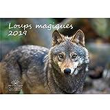 Loup magique · 42 cm x 29,7 cm · calendrier 2019 · Loup · Loup · Loups · Forêt · Nature · Animal · Faune Edition âme magique