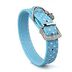 TOOGOO(R) Collar Correa Cuero PU Color Azul Ajustable para Perro Mascota XS
