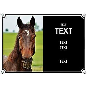 Boxenschild Pferd mit eigenem Foto u. eigenem Text – Metall – uv-beständig – ab DIN A5