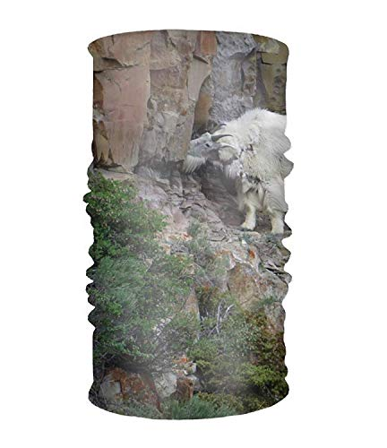 Wfispiy Outdoor Headband, Elastic Seamless Scarf Mountain Goat Sport Kopfbedeckung for Men & Women - Pony Plaid Hut
