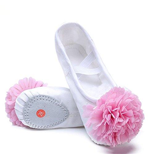 Wxmddn Scarpe da ballo Soft Bottom pratica scarpe Cat Claw scarpe Soft suole danza scarpe bianco A