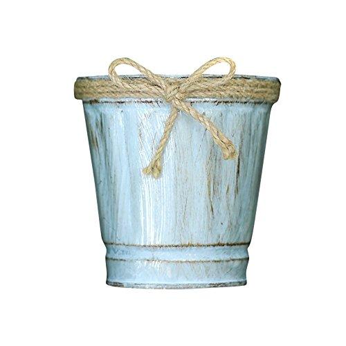 Upxiang Multifonction Iron Godet pour Semis Pots de Fleurs Suspendu Métal Fer Balcon Jardin Home Decor Pots de Plante Solide et Résistant (A)