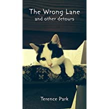The Wrong Lane: and other detours (Ice Made and other stories Book 1)