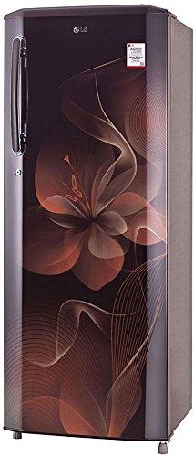 LG 270 L 4 Star Direct-Cool Single Door Refrigerator (GL-B281BHDX.DHDZEBN, Hazel Dazzle)