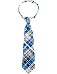 Retreez elegante Tejido tartán de cuadros escoceses PRE-TIED de microfibra Boy 's Tie