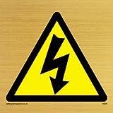 Viking Schilder we94-s20-gv Elektrische Warnung Symbol Zeichen, Gold Vinyl, 200mm H x 200mm W