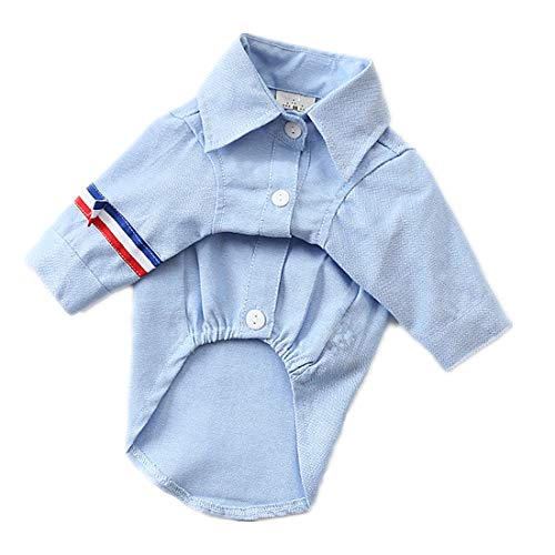 PZSSXDZW Lässige Haustierkleidung Zweibeiniges Hemd Haustierhundeanzug Hundekleidung Frühling und Sommer,Blau,L