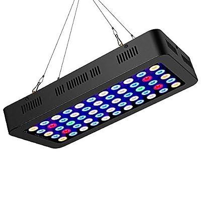 165W LED Aquarium Lumière Aquariophilie Decoration Lumineux Dimmable Spectre Complet Eclairage Aquarium pour Poissons Corail Et Plantes en Aquarium