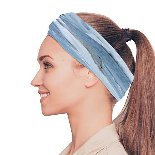 Rtosd Eisbär Tier Elastische Stirnbänder Kopfwickelschal Sport Schweißband Gesichtsmaske Magischer Schal Haarschmuck Bänder Krawatten Für Frauen Mädchen Laufen Fitness Yoga -