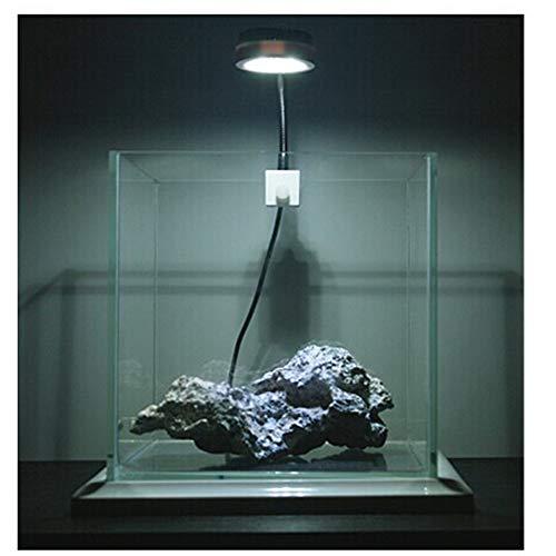 Wellouis Mini-Aquarium-LED-Klipplampe Hight helles energiesparendes Wasser-Gras-Licht für Aquarium