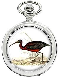 Ideal Como Regalo Para Enfermeras Capable Reloj De Bolsillo Con Diseño De Gato Relojes, Recambios Y Acces. Relojes De Enfermera