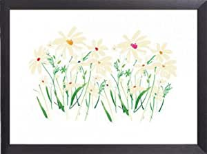 Flowers Poster Art Print and Frame (Aluminium) - Marguerites And Daisies, Summer Thornton (32 x 24 inches)