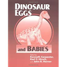 Dinosaur Eggs and Babies Paperback