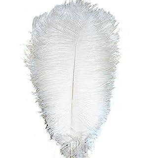 AABUY Lot de 10 plumes d'autruche naturelles 40-45 cm Prunes Mariage Vêtement Fête Décoration de table DIY 14-16inch blanc